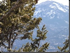 3-15-2013, mountains, RMNP 013